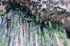 Colunas do basalto Imagens de Stock