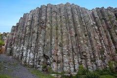 Colunas do basalto Imagem de Stock