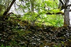 Colunas do basalto - parede de prisma em Alemanha foto de stock
