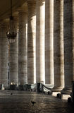 Colunas do Vaticano com um pássaro Fotografia de Stock