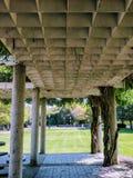 Colunas e árvores do caramanchão fotografia de stock