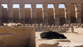 Colunas e estátuas gigantes dentro imagem de stock