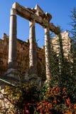 Colunas em baalbek imagem de stock royalty free