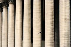 Colunas gregas Imagens de Stock