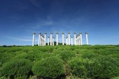 Colunas nacionais de Caoital no arboreto nacional Foto de Stock