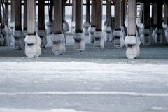 Colunas no gelo Fotos de Stock Royalty Free