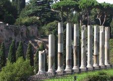 Colunas restantes do templo do Vênus & da Roma Fotografia de Stock