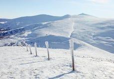 Colunas Snow-covered sobre a montagem de Stog Imagens de Stock Royalty Free