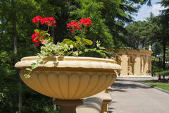 Colunata decorativa com flores Foto de Stock