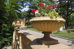 Colunata decorativa com flores Fotografia de Stock