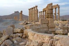 Colunatas e castelo, Palmyra fotografia de stock royalty free
