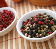 Colurful pepper seeds Royalty Free Stock Photo