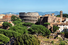 colusseum Ιταλία Ρώμη Στοκ Φωτογραφίες
