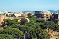 Colusseum, Rome - Italy Royalty Free Stock Photos