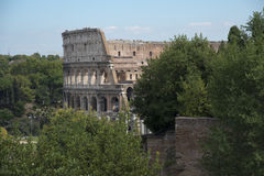 Colussium in Rome. From the surrounding ancient gardens Stock Image