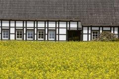 Colza il campo con la casa armata in legno a maggio, Bassa Sassonia, Germania Fotografia Stock