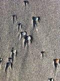 Comètes 2 de plage Photos libres de droits