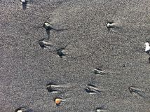 Comètes 3 de plage Image libre de droits