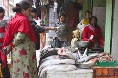 Comércio da rua nos peixes imagem de stock