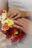 Com estes anéis Imagem de Stock