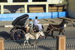 Com Kutsche explore a cidade Aswan em Egito Imagem de Stock
