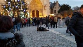 Com necessidade do abrigo em Notre Dame imagens de stock royalty free