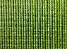 Com nervuras verde Foto de Stock