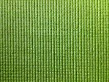 Com nervuras verde Imagens de Stock