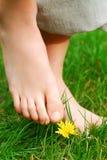 Com os pés descalços Foto de Stock