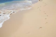 Com os pés descalços em Barbados Imagens de Stock Royalty Free