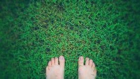 Com os pés descalços na grama verde após uma chuva Imagens de Stock