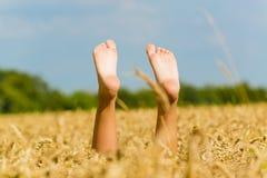Com os pés descalços no campo de trigo Fotografia de Stock