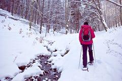 Com sapatos de neve em uma floresta do inverno fotografia de stock royalty free