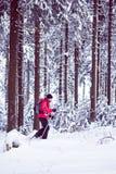 Com sapatos de neve em uma floresta do inverno foto de stock royalty free