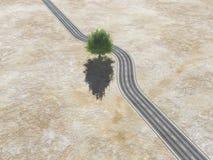 Com uma árvore no meio da estrada Fotografia de Stock Royalty Free