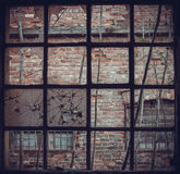 Com uma janela da estrutura Fotos de Stock Royalty Free