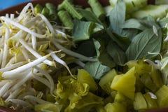 Coma las verduras con los tallarines fermentados de la harina de arroz imagen de archivo libre de regalías