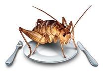 Coma o conceito exótico do alimento dos erros ilustração stock