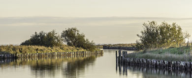 Comacchio valley lagoon. Channel in the Po river lagoon royalty free stock image