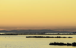 Comacchio valley lagoon. Sunset the Po river lagoon with silhouettes royalty free stock photos