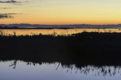 Comacchio valley lagoon. Sunset in the lagoon with a silhouette in the foreground royalty free stock photos