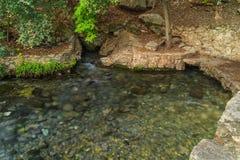 Comal весны в парке Landa, новое Braunfels, Техас Стоковое Изображение