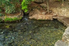 Comal Springs In Landa Park, New Braunfels, Texas Stock Image
