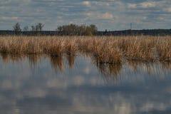 Comana lake Stock Photos