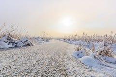 Comana lake in winter Royalty Free Stock Photos