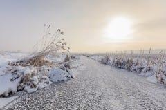 Comana lake in winter Stock Photo
