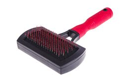 Comb for combing cats and dogs. Studio Photo royalty free stock image