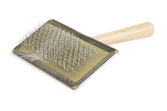 Comb for combing fur in cats Stock Images