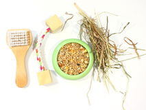 Comb and feed to care pets Stock Images