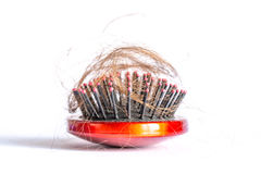 Comb hair with tufts, bundle of hair, lots of hair on the hairbrush close up on a white. Background Royalty Free Stock Images